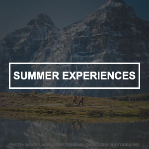 Summer Experiences