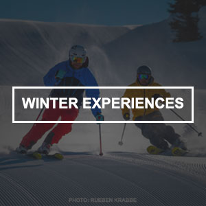 Winter Experiences